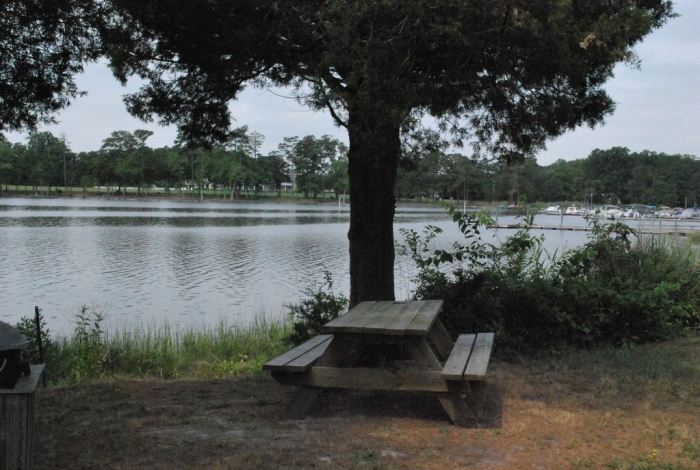 36402_6434afb960e24e4881d197776e2f9e05f10 23319 Boat Dock Drive   Lewes,  De,  Real Estate For Sale   MLS#   - Rehoboth Bay Realty